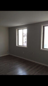 LARGE 1 BDRM DT BRANTFORD, STEPS TO LAURIER, UTILITIES INCLD