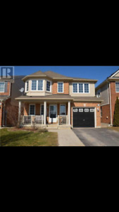 Full house is for rent in Alliston