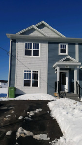 Beautiful duplex house (4 bed and 3.5 bath) in Governor's Brook