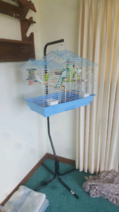 Budgies, Cage, Stand