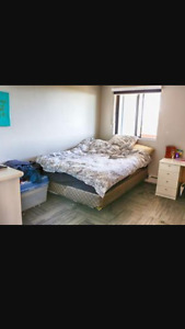 2 bedrooms available, no deposit, cheap luxury building