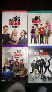 Big Bang Theory seasons 1 - 4