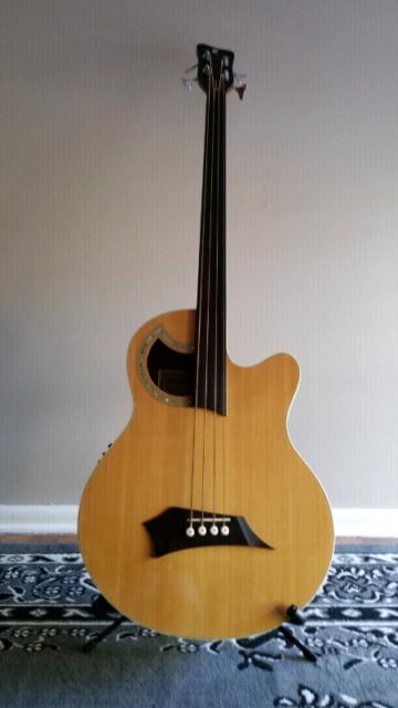 1602cde029 Warwick Deluxe Alien Rockbass Fretless Bass | Guitars & Amps ...