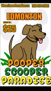 Dog poop / dog waste removal