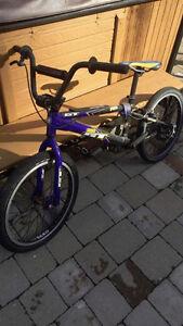 BMX GT Pro