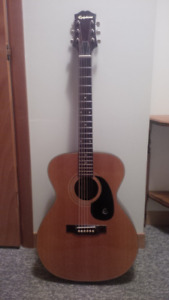 Epiphone Acoustic Guitar FT-120