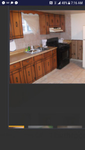 Spacious clean one bedroom basement apt AVAIL Sept 1