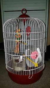 Bird Cage with toys $35
