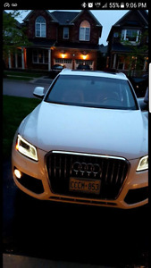 2014 Audi Q5 Brown SUV, Crossover