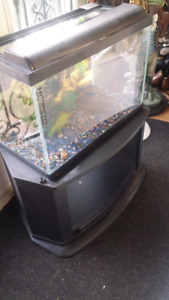 Gorgeous 25 gallons fish tank with accessories for 60