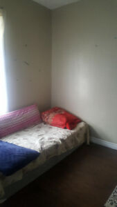 Wanted: Female roommate for May 1st