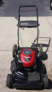 SERVICED LAWNMOWERS / WHIPPERS / BLOWERS
