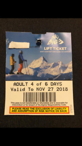 Ski big 3 lift ticket 2 days