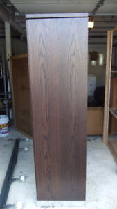 tall stand alone cabinet closet in great cond