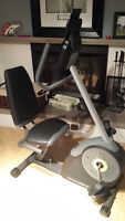 Golds Gym Cycle Trainer & punching bag