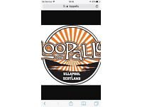 Loopallu 2016 campervan ticket