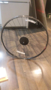 Araya Bicycle Rear Rim
