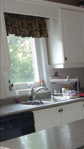 Kitchen faucet and curtain