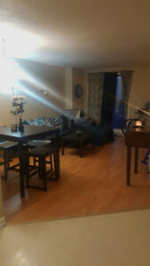 1 Bedroom, 2 month lease takeover