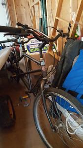 Clasic tandem bike