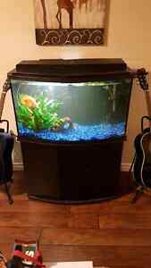 46 gallon bow front aquarium with everything