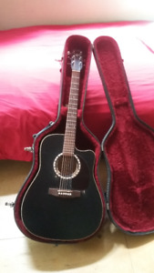 Electric/Acoustic Guitar