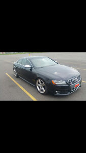 2010 Audi S5 Premium plus Coupe (2 door)