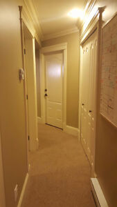 1 bedroom executive style basement suite for rent