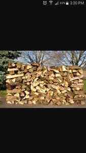 Aged Dried Premium Fire Wood Cambridge Kitchener Area image 1