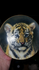 Collectable limited edition tiger cub plate