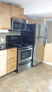 Newly renovated 3 bedroom lower suite,$500 off first month.