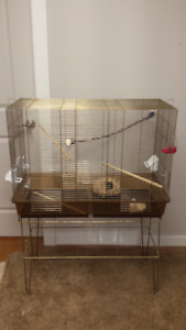 Large Brass Bird Cage
