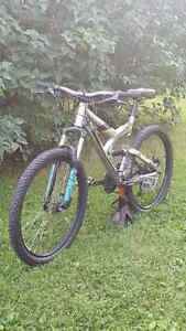 Giant warp ds moutain bike forsale or trade