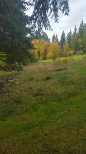SHUSWAP LAKE GOLF COURSE LOT FOR SALE