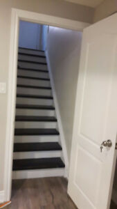 Basement for rent in Springdale. Bramalea and Father Tobin.