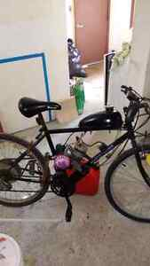 Gas powered bike for sale