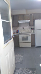 Brand new 1 bedroom suite in Montrose. (Trail)