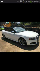 BEAUTIFUL 2010 Audi S5 Sport Convertible
