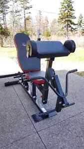 Amstaff Olympic Press Bench with two attachments (home gym)