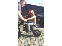 125cc oil cooled