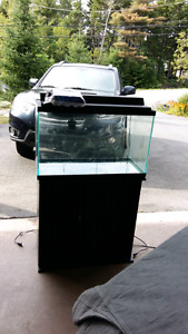 34-36 gallon fish tank filter/heater with stand.