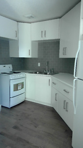 REMODELLED MODERN 1 BEDROOM APPRMENT IN 4 PLEX