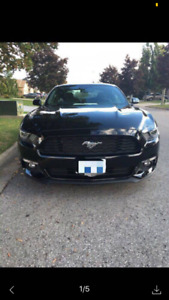 back to home country, 2015 Ford Mustang , only 36000 km, $20300