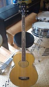 Acoustic fretless bass