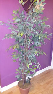 Lovely Artificial Plant