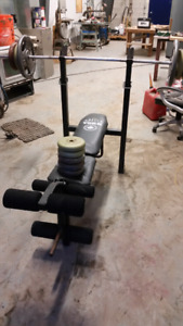 York bench press with weights