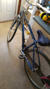 Ladies Giant Cypress aluminum bike