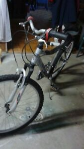 ADULT 21 sp Bike