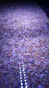 100 POUNDS OF NEUTRAL COLORED AQUARIUM GRAVEL /SUBSTRATE