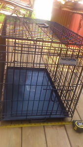 Precision Dog Kennel Crate